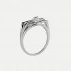 Reine Ring